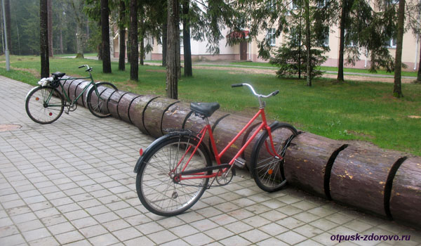 Парковка для велосипедов. Беловежская Пуща