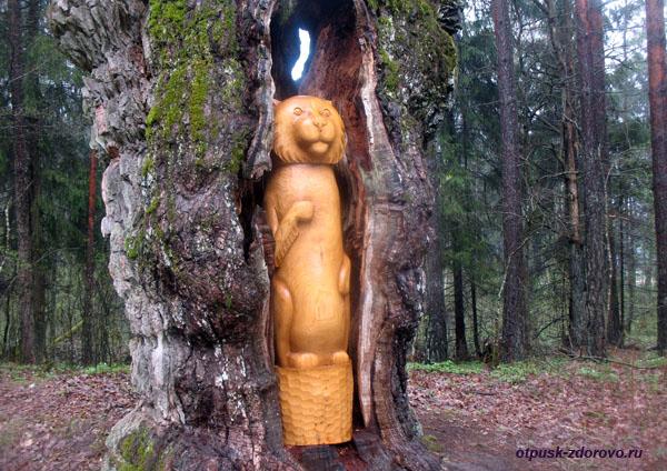 Дуб-отшельник и его охранник: деревянный кот.Экскурсия по Беловежской Пуще, Беларусь