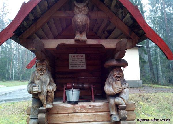 Волшебный колодец. Экскурсия по Беловежской Пуще, Беларусь