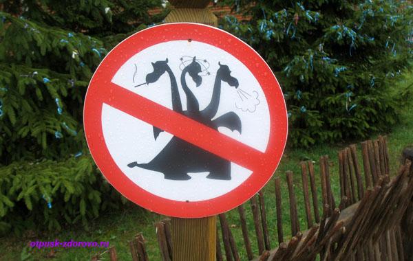 Знак Драконам вход запрещен. Беловежская Пуща. Резиденция Деда Мороза, Беларусь