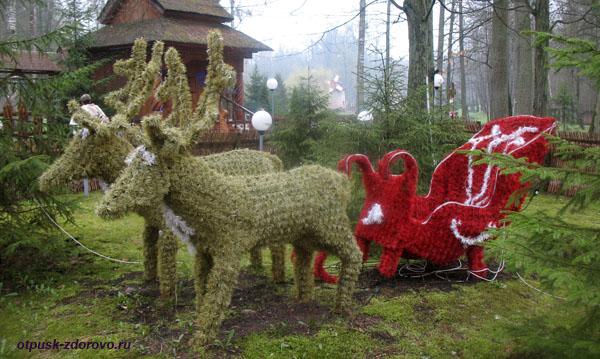 Запряженная пара оленей. Беловежская Пуща. Резиденция Деда Мороза, Беларусь