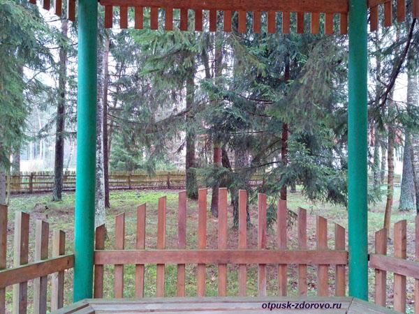 Беседка. Территория гостиничного комплекса Каменюки в Беловежской Пуще
