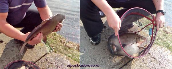 Река Свислочь, рыбалка в центре Минска