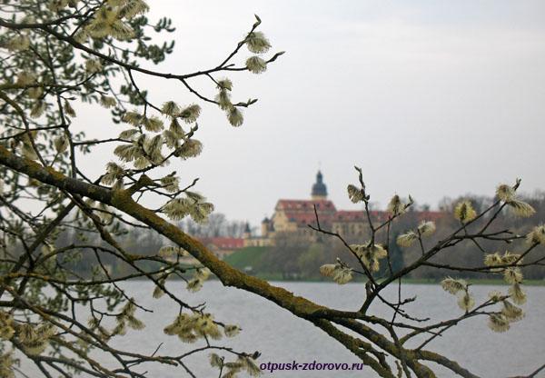Несвижский Дворцово-Парковый комплекс, Беларусь