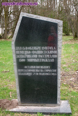Памятник погибшим в ВОВ. Несвижский Дворцово-Парковый комплекс, Беларусь