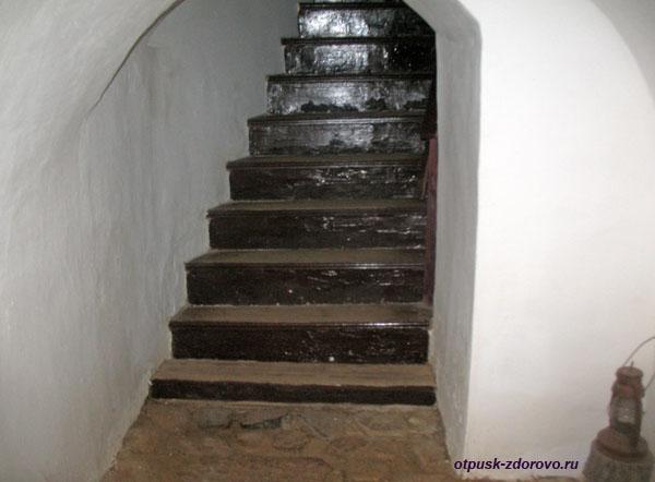 Ступени в подвал, дом Тадеуша Костюшко в Коссово, Беларусь