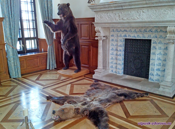 Чучело медведя. Охотничий зал в Замке Радзивиллов в Несвиже, Беларусь