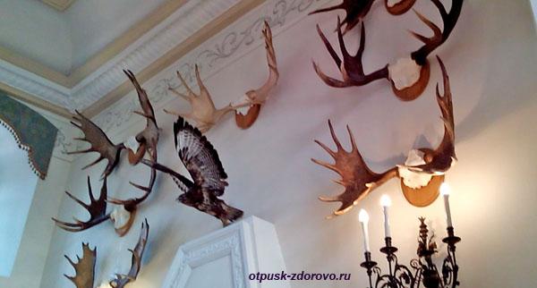 Охотничий зал в Замке Радзивиллов в Несвиже, Беларусь