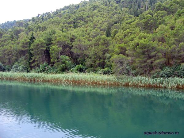 Национальный парк Крка. Теплоход из Скрадина по реке Крка