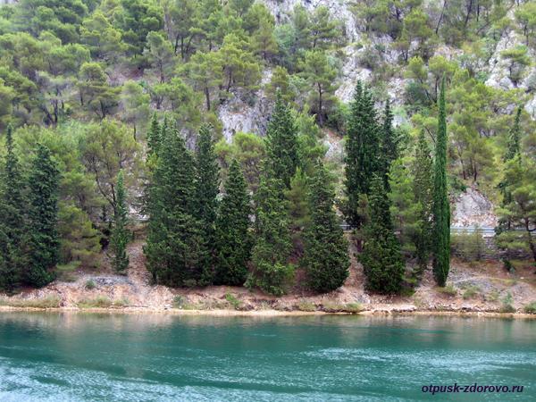 Национальный парк Крка. Сосны и горы