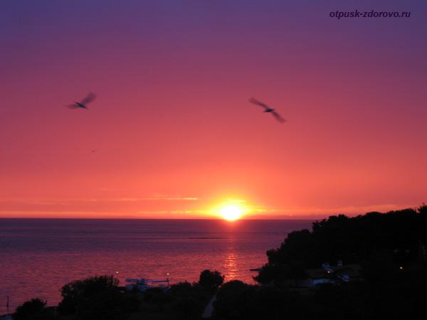 Хорватия, Пореч, Зеленая Лагуна, закат, море, чайки