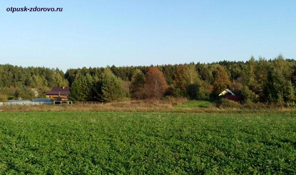 Широкий русский простор, поле, деревня возле Гремучего ручья, Калужская область