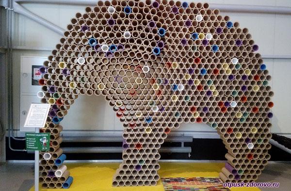 Втулковый слоник, Музей Мусора, Калужская область