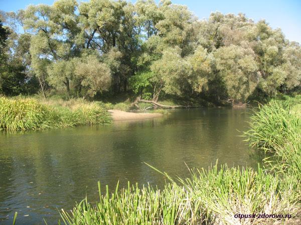 Река Протва возле Усадьбы Дашковой в селе Троицкое Калужской области