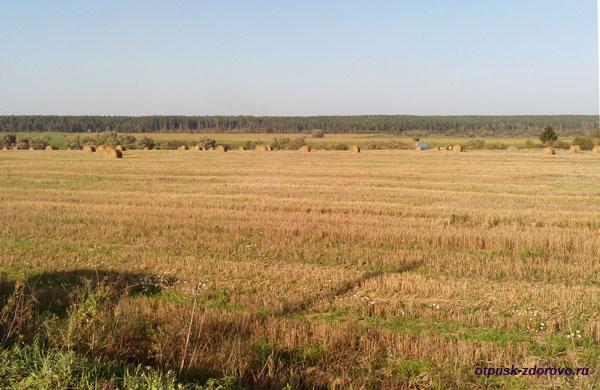 Русский простор, поля, стога, Калужская область