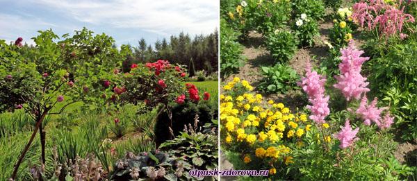 Бал цветов, Следово, Костромская область