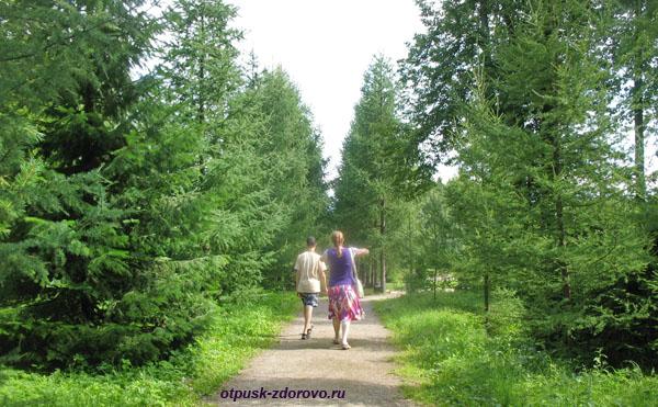 Прогулка по парку в усадьбе Следово, Костромская область