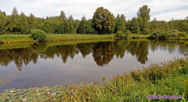 Пруд, Следово, Костромская область