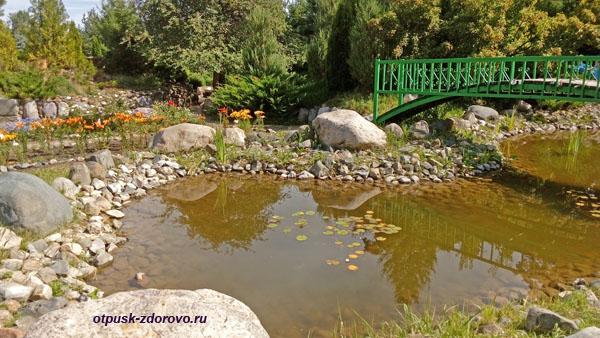 Красивый пруд, Следово, Костромская область