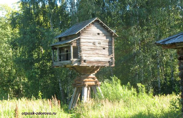 Избушка на Курьих ножках (древнерусская баня), музей деревянного зодчества, Кострома