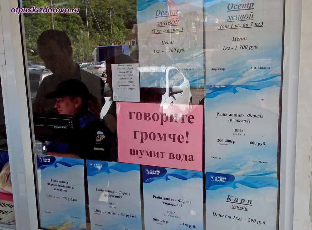 Цена на свежую рыбу, Форелевое хозяйство, Адлер (Сочи)