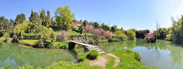 Адлерский парк Южные культуры