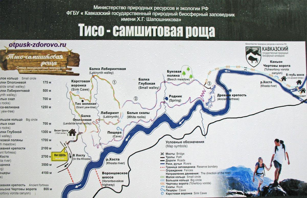 Карта Тисо-Самшитовая роща, Хоста