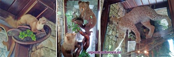 Чучела животных, Башня Ахун, Сочи