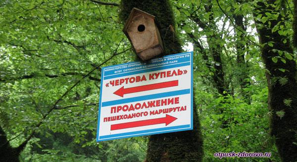 Указатели на Агурских водопадах, Сочи