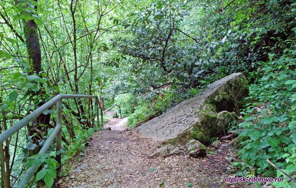 Маршрут на Агурские водопады, Сочи