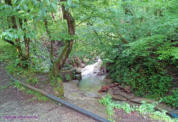 Сероводородный ручей возле Поляны Высоцкого, Сочи