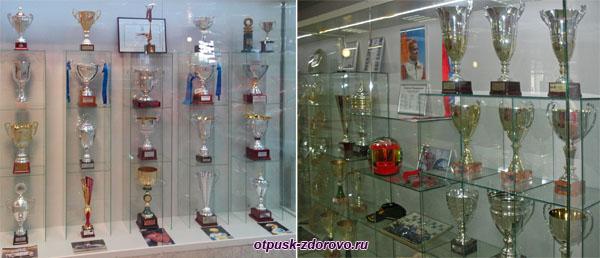 Кубки победителей за участие в соревнованиях Формулы-1