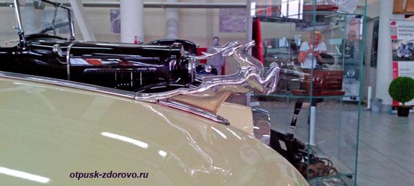 Эмблема с оленем на машине Волга