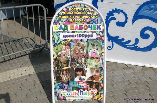 Сад бабочек, стоимость входа, Сочи Парк