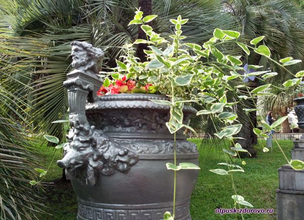 Ваза с цветами, Парк Дендрарий в Сочи