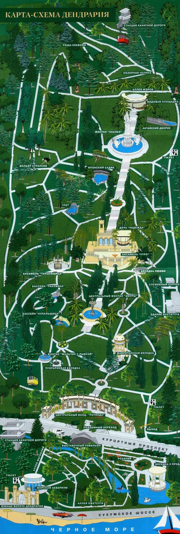 Карта, Парк Дендрарий в Сочи