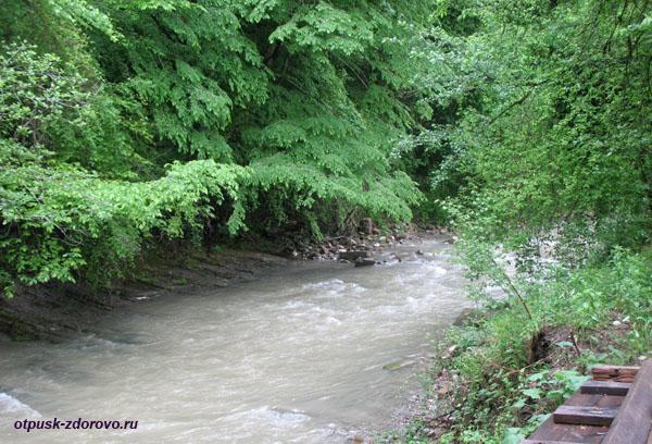 Река Псахо возле Троице-Георгиевского монастыря, Сочи