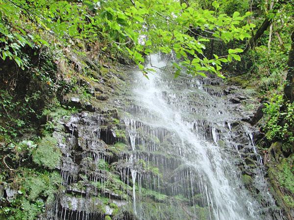 Водопад Девичьи Слезы возле Красной Поляны (Сочи)