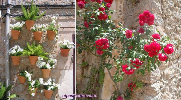 Цветы на стенах домов, Вальдемосса, Майорка