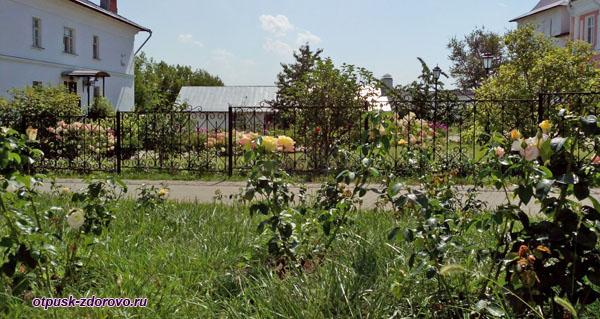Территория, цветы. Введенский Владычный женский монастырь, Серпухов
