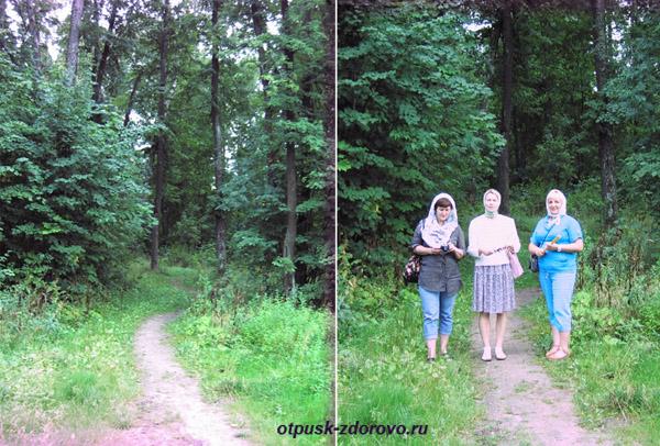 Дорога к Усадьбе Храповицкого в Муромцево