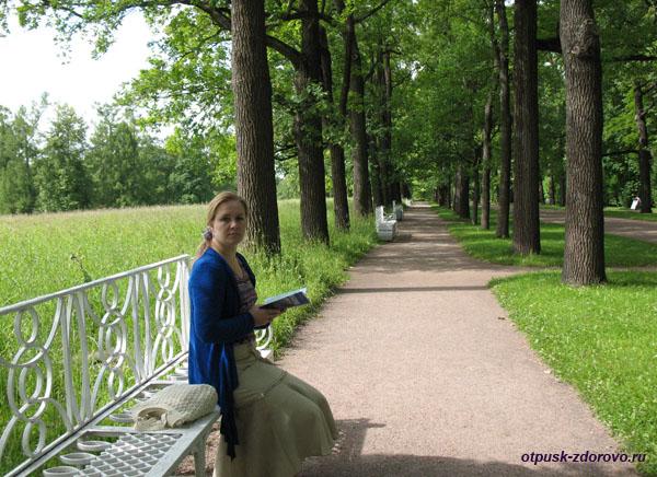 Екатерининский парк в Царском Селе (город Пушкин), аллея