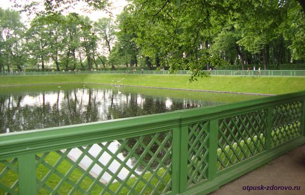 Летний сад в Санкт-Петербурге, пруд с лебедями