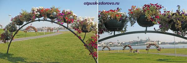 Цветы на территории возле Центр семьи Чаша в Казани