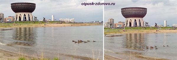Утки плывут по Казанке возле ЗАГС-а Казан в Казани