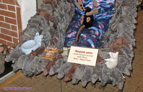 Мышиная ванна, Музей Мыши, Мышкин
