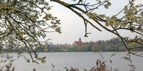 Несвижский Дворцово-Парковый комплекс